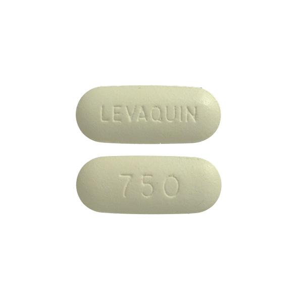 buy levaquin generic online